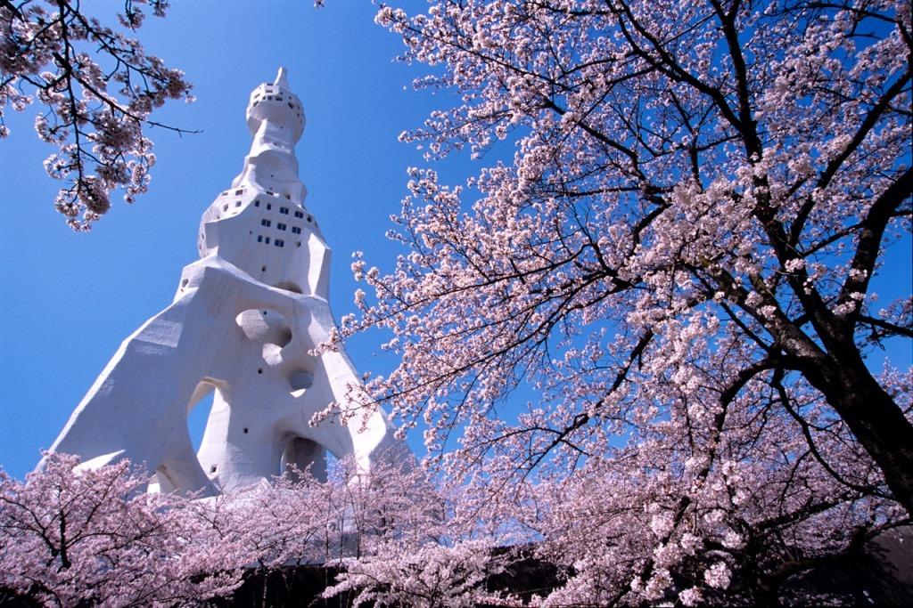 Sakura&PeaceTower(Web)